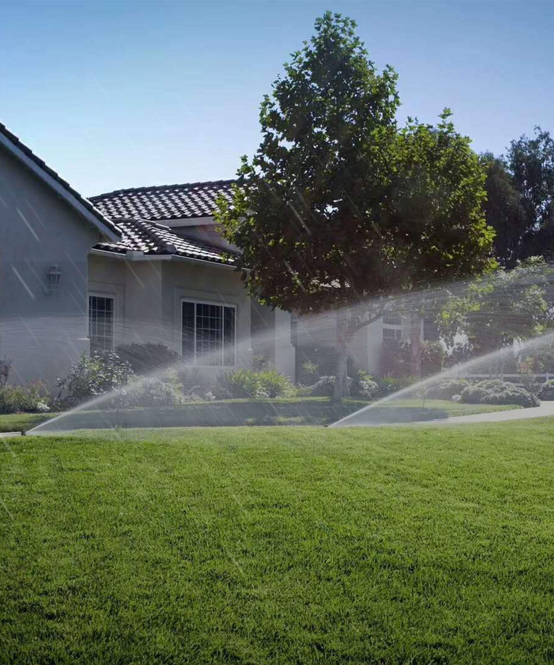 Smart Watering, saving energy in Water